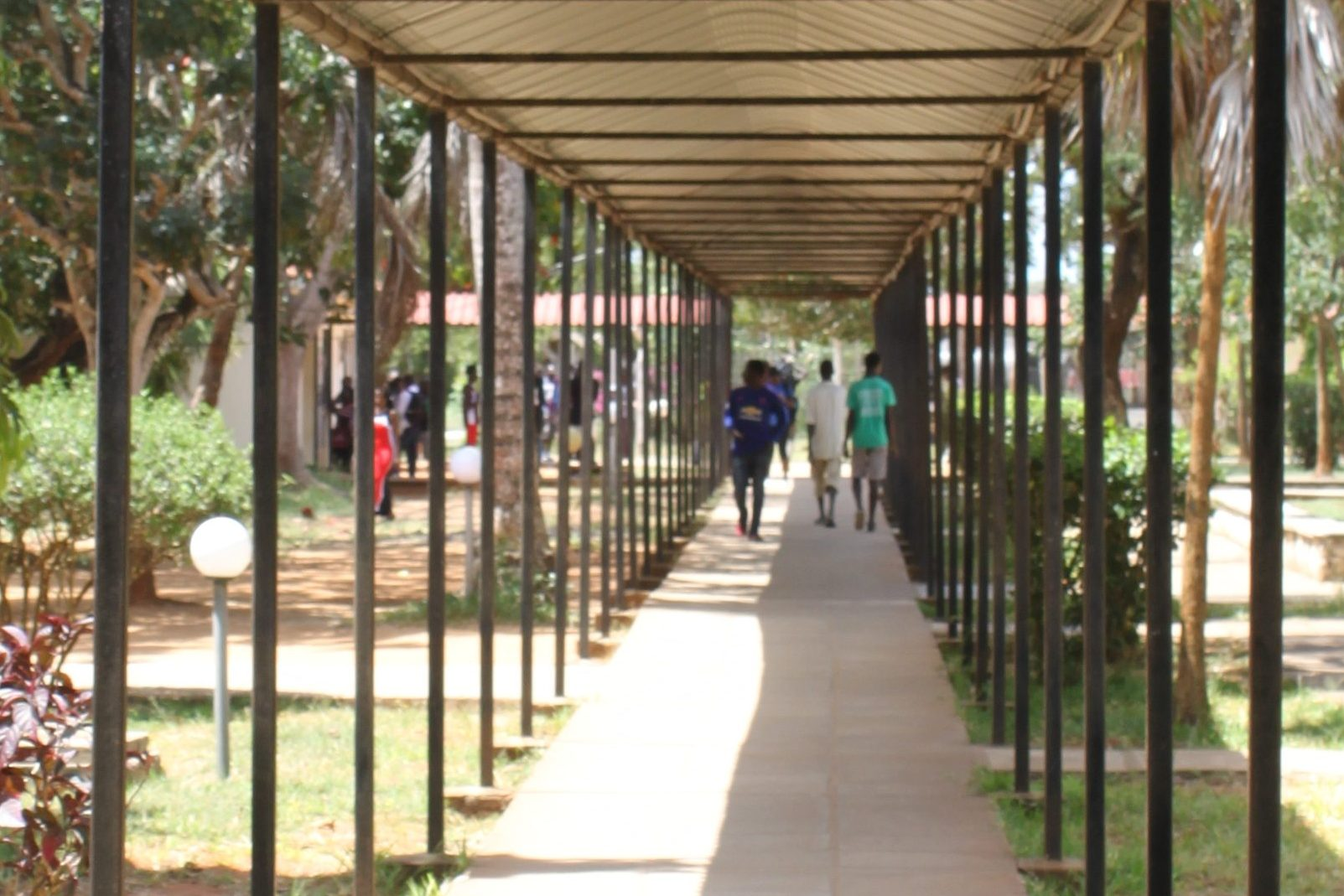 Learn more about other ssDNAfrica activities taking place at Pwani University.